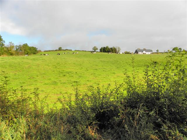 Coohey Townland