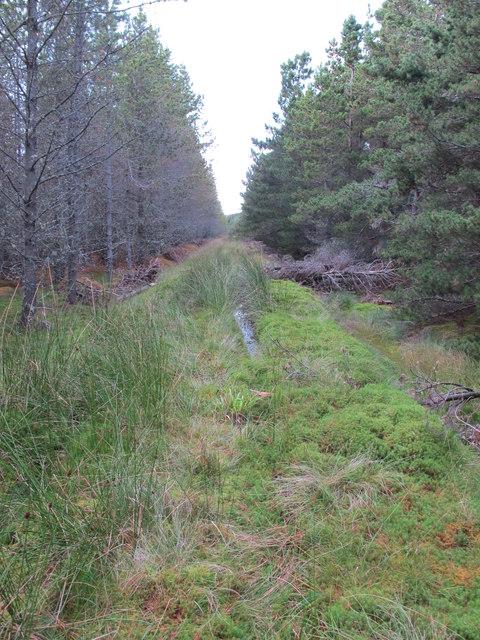 Boggy Track Near Rochuln