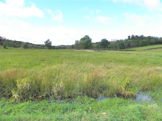 Lislanly Townland