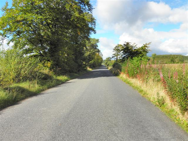 Road at Corracloghan