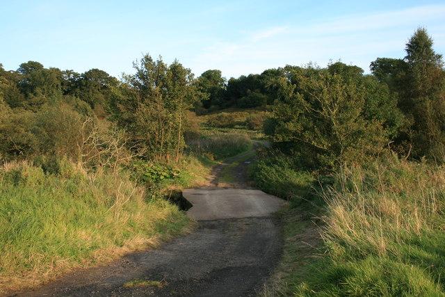 Farm Track Near High Park