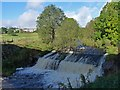 SO1310 : A weir on the River Sirhowy by Robin Drayton