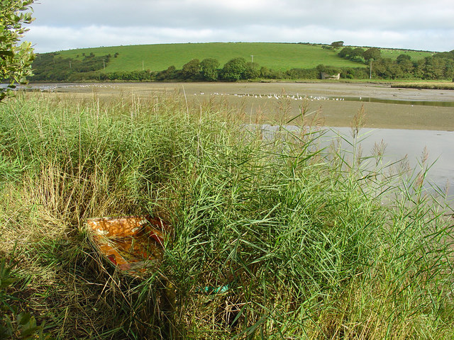 Boat in Reeds: Nyfer Estuary