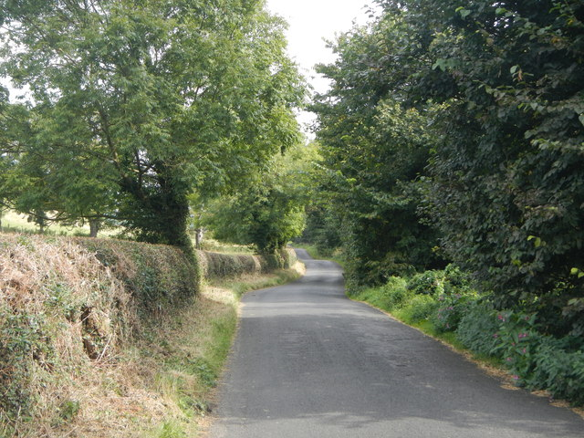 Road from Bywell to Ovingham