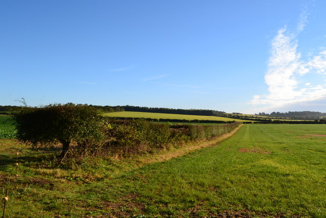 Fields near Cocum Cottages