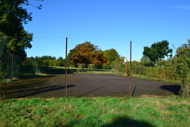 Mossy ball game court at Barton Stacey