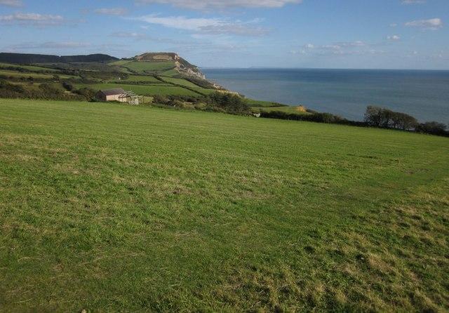 Field at Westhay Farm