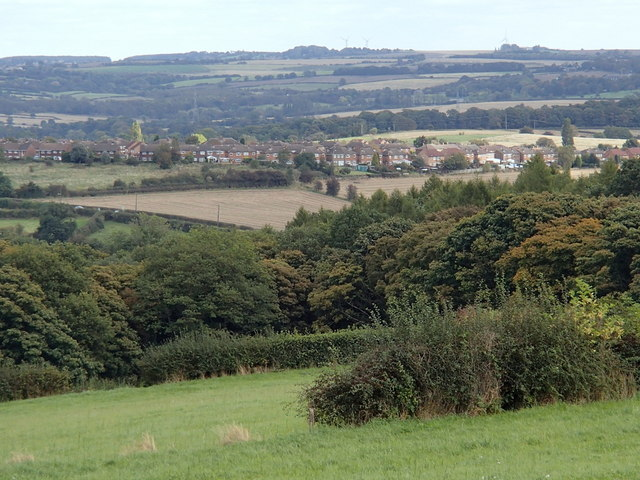 Hillside below Handley Farm