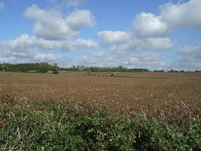 Farmland, Warboro Farm