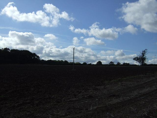 Farmland, Budbrooke Farm