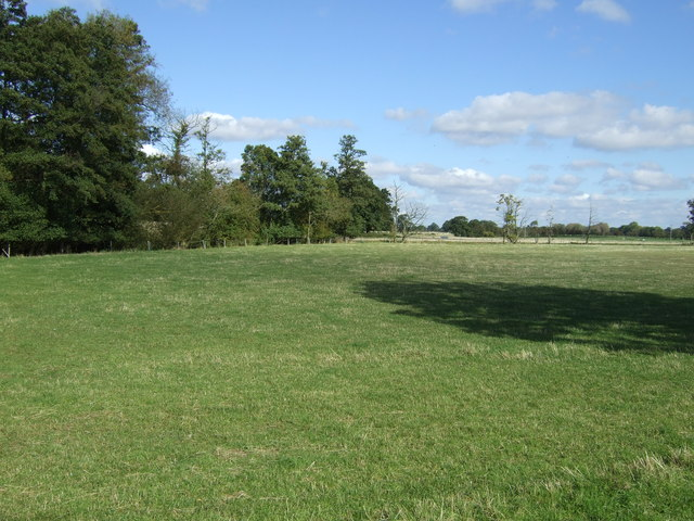 Farmland near Inchford Brook Farm