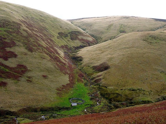 Sheepfold by Trowup Burn