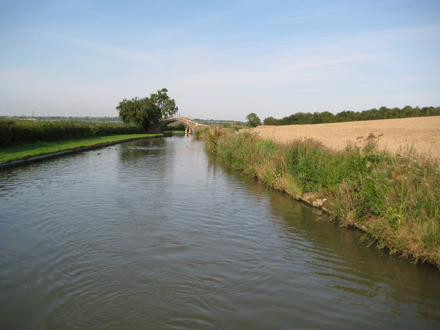 Grand Union Canal: Reach near Nethercote