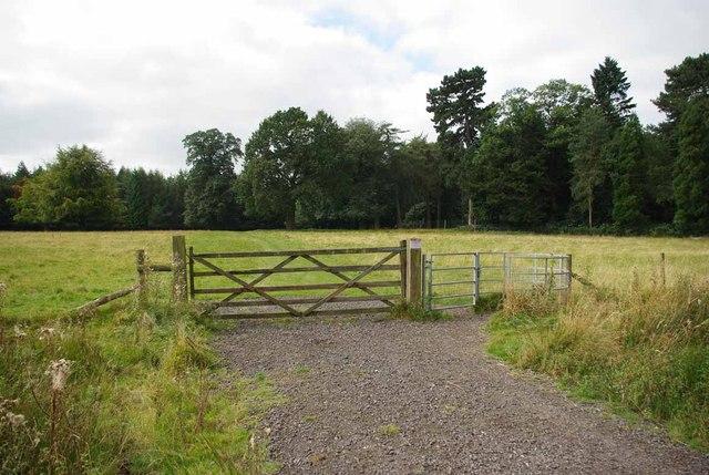 Tatton Park Pasture