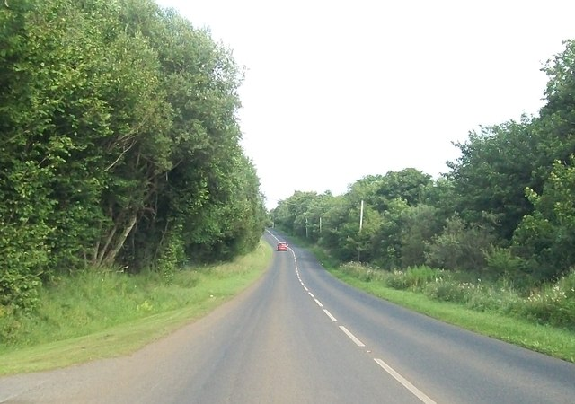 The A35 cutting through a wooded area between Pettigo and Kesh