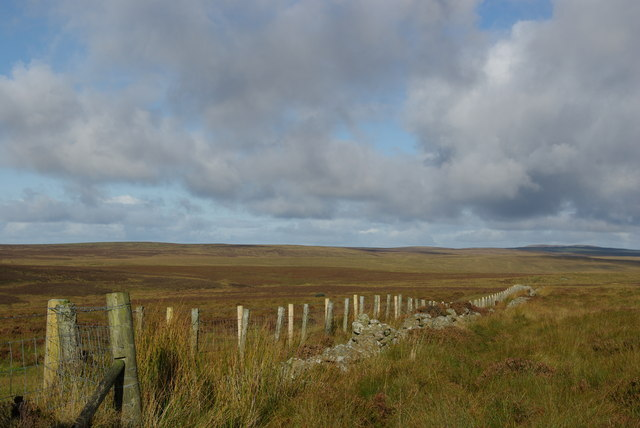 Fence &amp; drystane dyke on Cairnscarrow