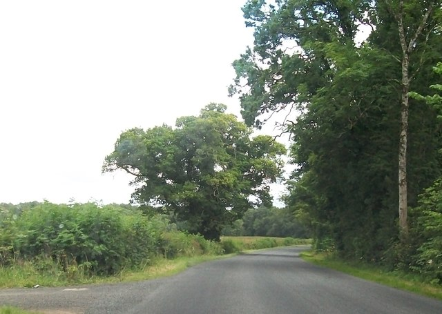 The B82 at Rockfield