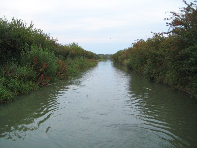 Grand Union Canal: Reach near Ventnor Farm Marina