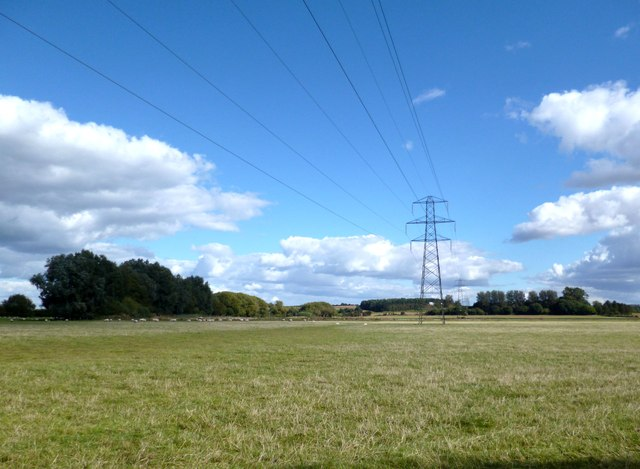 Field near Chippinghurst Manor