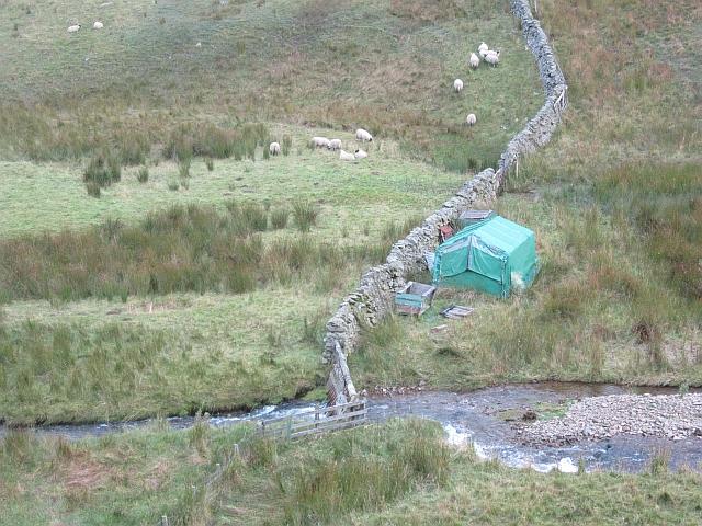 Tent, Upper Newby