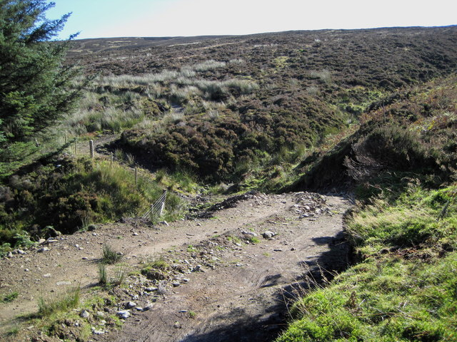 Track on Yellow Mire Hill