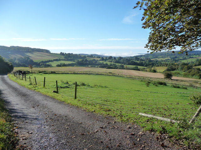 Paddock at the top of the Wash Brook valley near Painswick