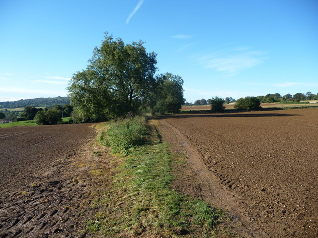 Autumn ploughsoil in the Wash Brook valley