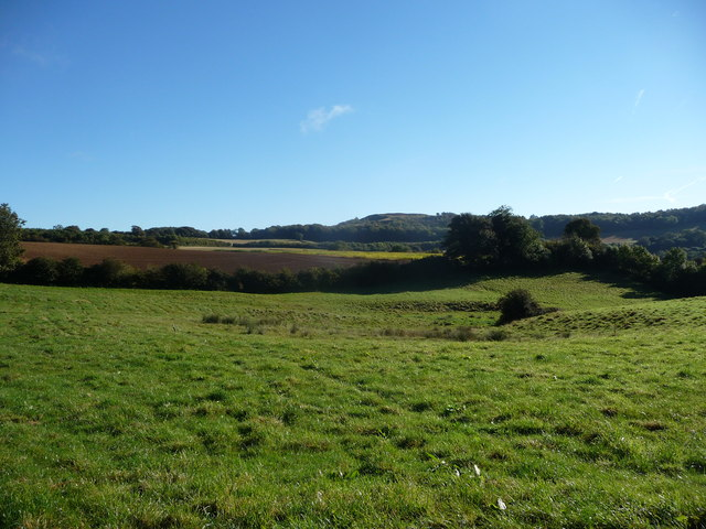 View up to Painswick Beacon from the Wash Brook valley