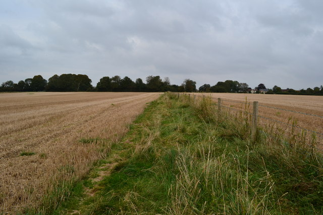 Path between fields