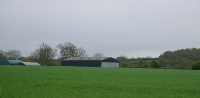 Farmland by the Wey South Path
