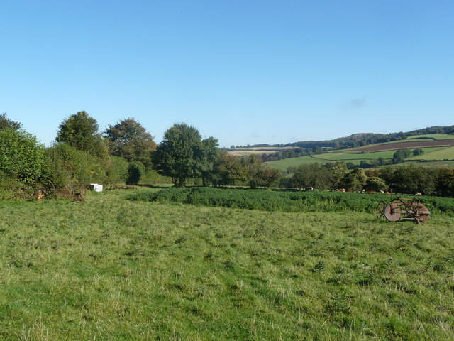 Rough pasture above Back Edge Farm