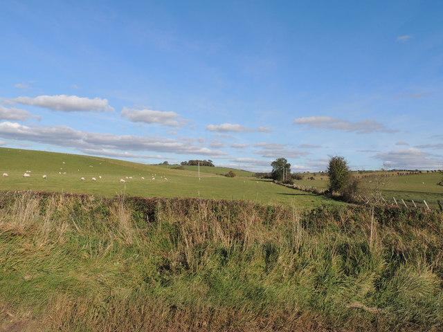 Farmland near Loudonston