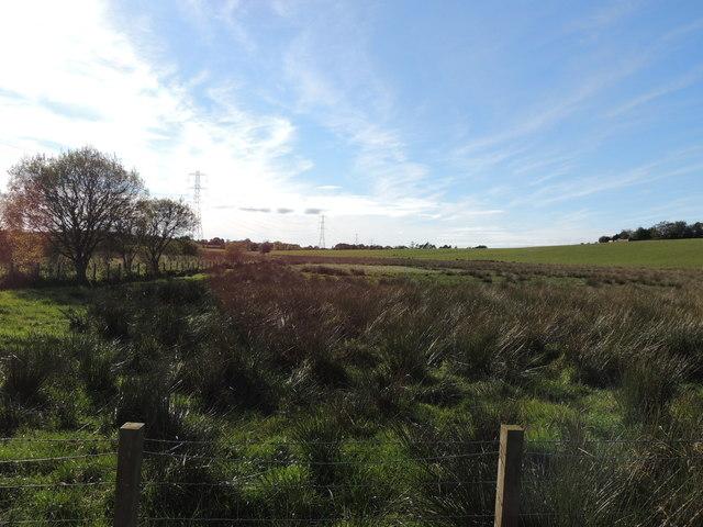 Farmland & Moorland near Loudonston