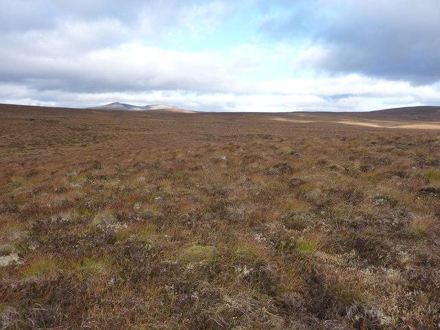 Sutherland moorland