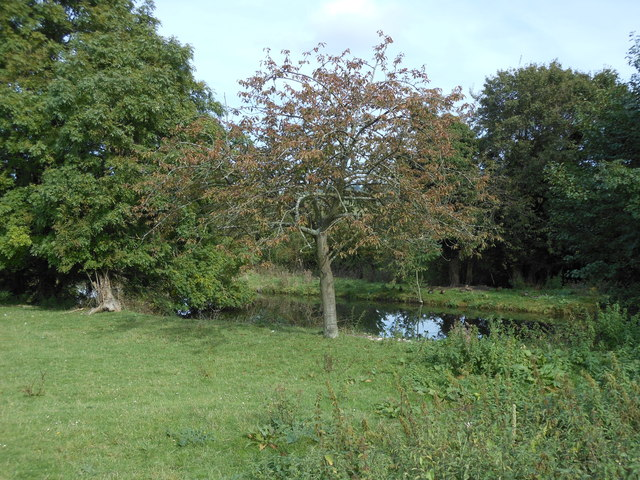 Part of the moat at Filston Hall