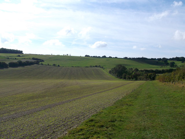 Footpath to Farthing Common