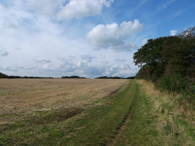 North Downs Way to Farthing Common