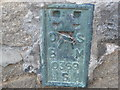 SE1565 : Ordnance Survey  Flush Bracket S0369 by Peter Wood