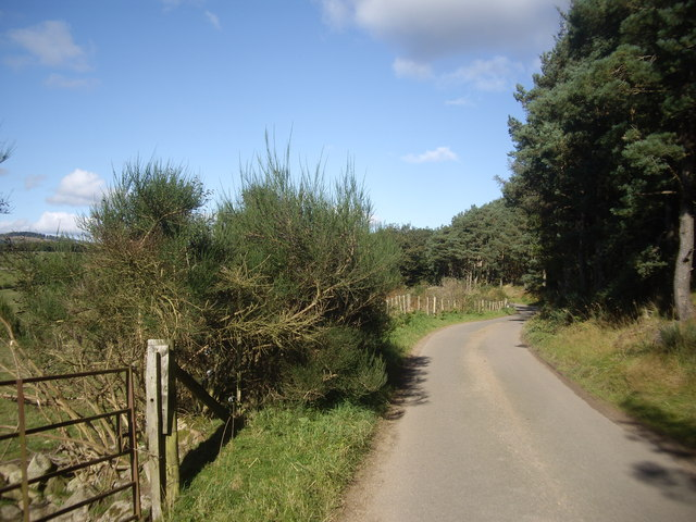 Minor Road from Wester Campfield to Pitcullen