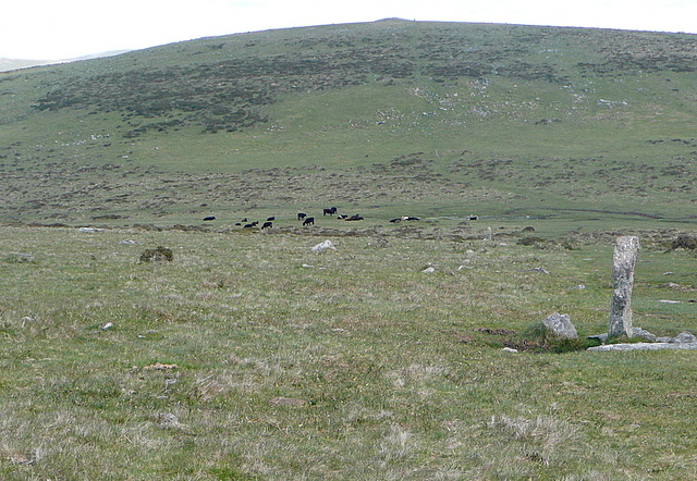 Boundary stones north of Western Beacon