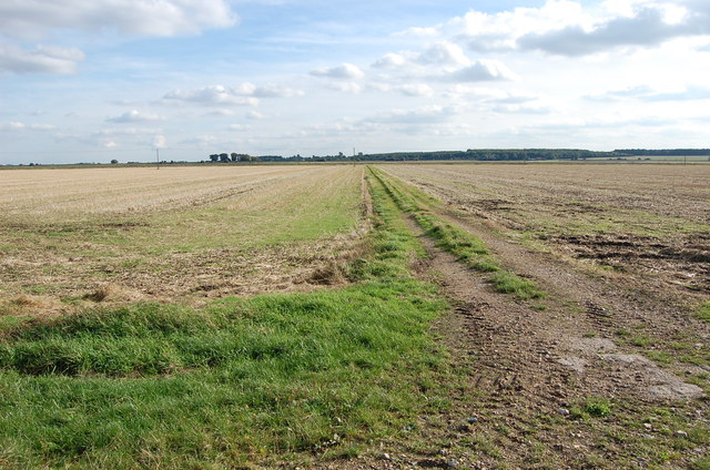 Farm Track, off Metheringham Fen Lane