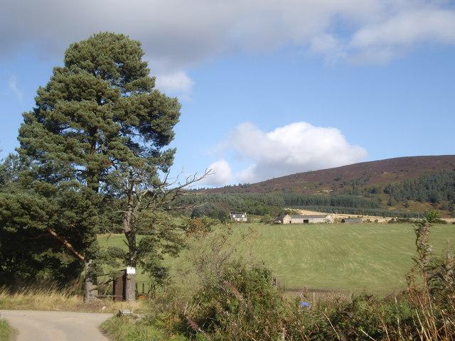 Junction for Blairhead