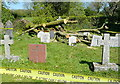 SX6359 : Harford churchyard, storm damage (4) by Graham Horn