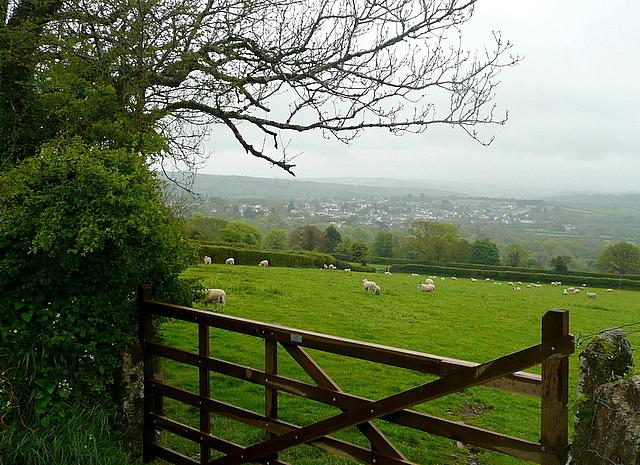 Pasture at Aish