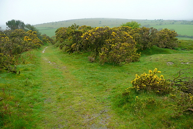 Bridleway on Aish Ridge