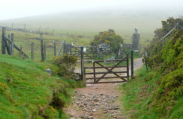 Approaching Ball Gate