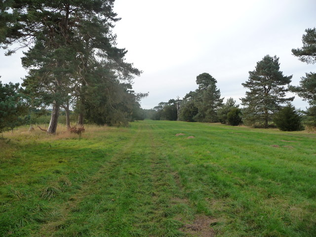 Part of Monnington Walk