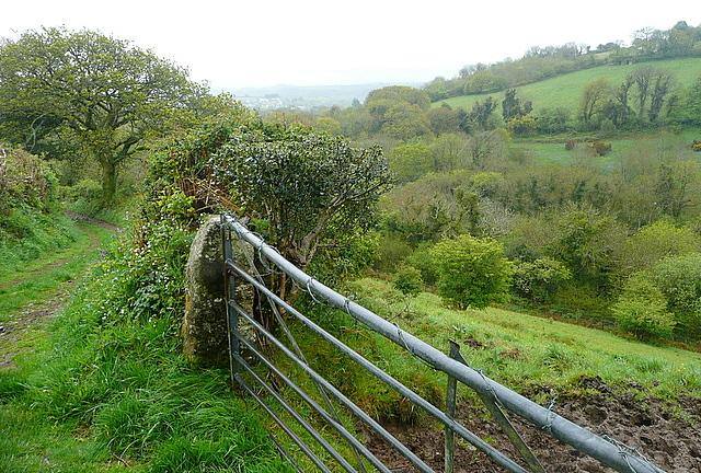 Bridleway to Lutton