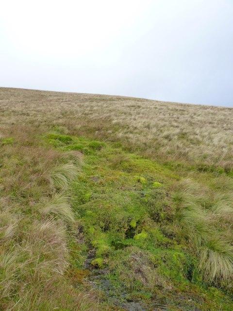 A hillside spring in Coire nan Aighean