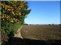 TL3076 : Rural scene near Woodhurst by Marathon